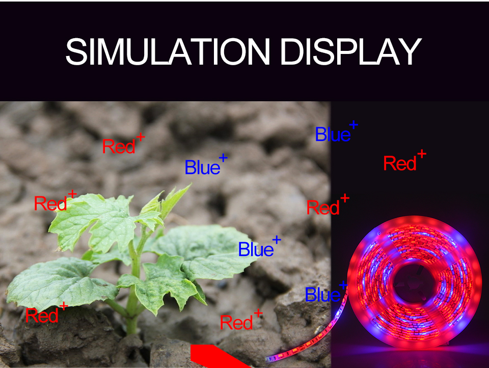 5M Led Plant grow light Waterproof SMD5050 Hydroponic Systems Led Grow Strip Light 300Leds Full spectrum (7)