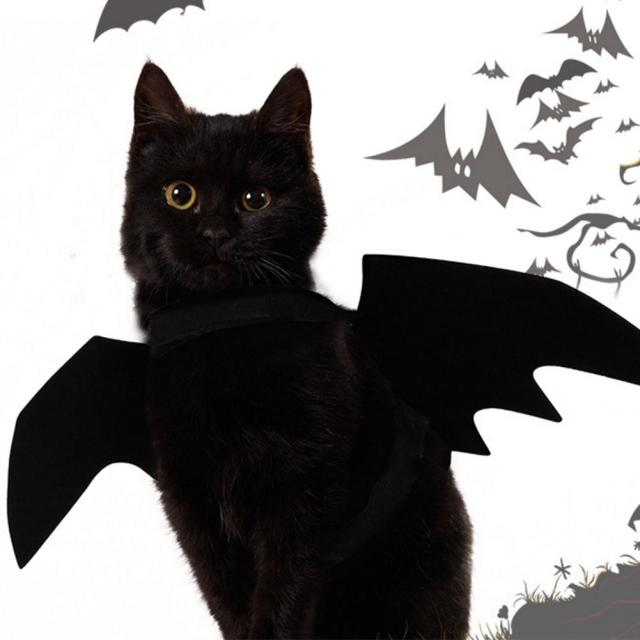 Brand New Costume For Pet Black Bat Wings Cool Puppy Cat Bats Dress Up