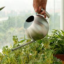 1L Stainless Steel Long Spout Watering Can Spherical Succulent Plants Flowers Sprinkling Pot Home Garden Tool