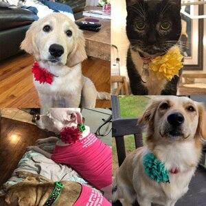 Image 5 - 100 adet köpek çiçek yaka bahar evcil hayvan ürünleri katlanabilir büyük köpek papyon yaka aksesuarları küçük köpek kedi yavrusu yaka takılar
