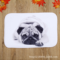 The Latest Design Of Silence In Front Of The Dog Home Bedroom Carpet Slip Mats