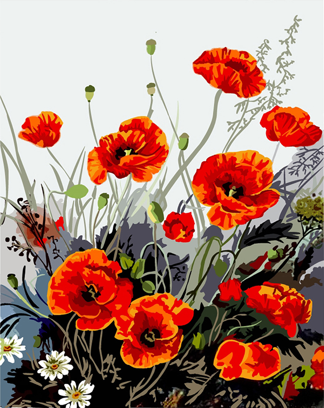 Frameless Pictures on wall acrylic painting by numbers canvas painting art Christmas gift coloring by numbers Red Poppy B308