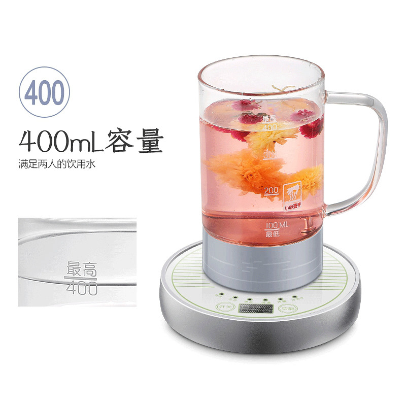 Electric kettle Health cup electric hot water mini office brew tea heater heating Overheat Protection electric kettle health care cup electric hot mini glass health pot office smart water brew teapot