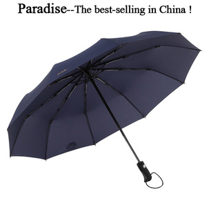 Automatic Windproof Umbrella F