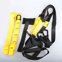 NEW Fitness Resistance Bands Body Building Hanging Training Strap Comprehensive Fitness Exercise Equipment Free Shipping