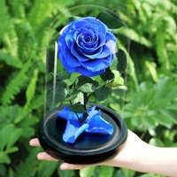 The Beauty And The Beast Artificial Flowers Decoration Red Eternal Rose In A Glass Dome Valentine Christmas Gift Dropshiping