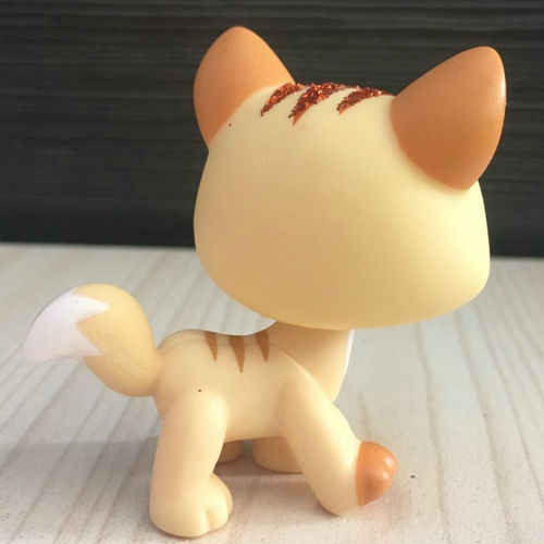 Detail Feedback Questions About Yellow Sparkle Ears Short Hair Cat