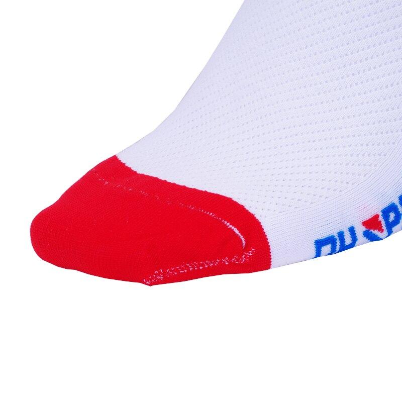 IMGP6626