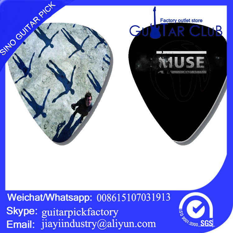Free shipping Custom band logo 2 side pirnted on guitar pick ukulele pick bass pick 120 pcs 21.6USD only