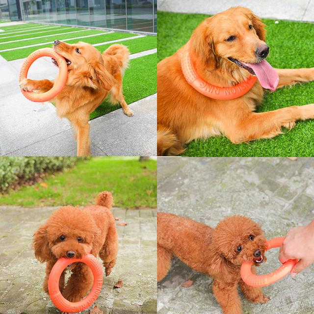 Dog's Ring Shaped Toy