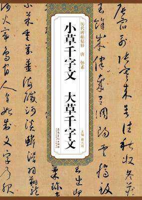 Xiao Cao The Thousand Character Classic Da Cao Qian Zi Wen A Rubbing From A Stone Inscription For Chinese Seal Brush Calligraphy