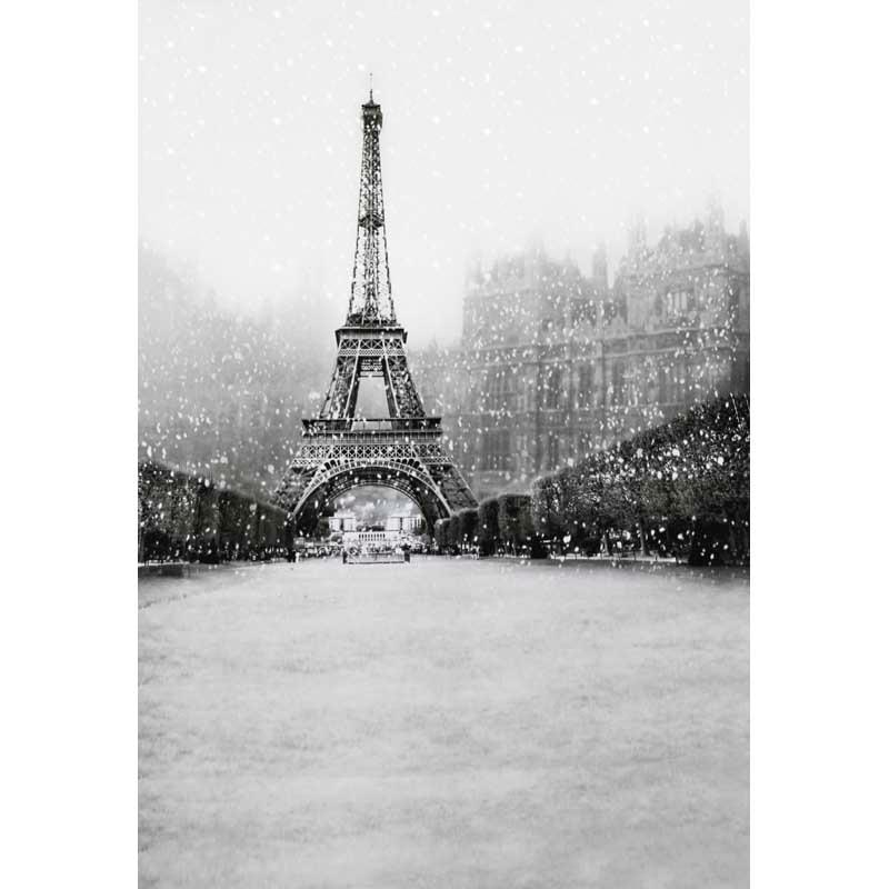 12ft Vinyl print black white Eiffel Tower photography backdrop for photo studio portrait backgrounds photographic props F-1531 singular bulbs magic props white silver black