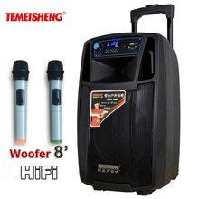 50 W HiFi Yüksek Güç Hoparlör Kablosuz Mikrofon Amplifikatör Taşınabilir Hoparlör Lityum Pil Desteği TF Kart USB Hareket Sütun