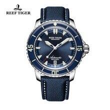 Риф Тигр/RT супер световой часы для дайвинга Мужские Аналоговые автоматический синий циферблат часы с датой RGA3035