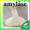Powder Enzyme Bacterial Alpha Amylase, 10,000u/g 500g