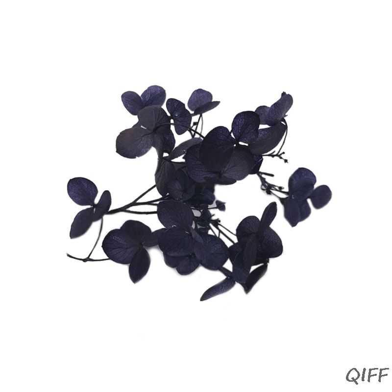 1 коробка сухой цветок DIY изделия из эпоксидной смолы ручной работы наполнение материалов наполнитель сушеные цветы Время камень ювелирных изделий стола Decorati