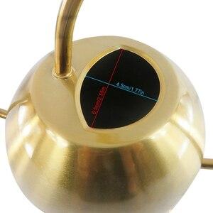 Image 3 - Arrosoir 1500Ml pour plantes dintérieur à bec Long en acier inoxydable brossé arrosoir