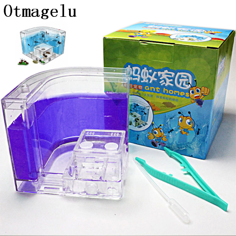 Acrylic Ants Farm Ants House Castle Colorful Insects Terrarium Ant Cage Insects Box Nursery Ecological Kid Educational Model Toy