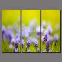 3 Pcs Big Size Flowers Decoration Purple Canvas Printed Painting On Wall Art Pictures For Living