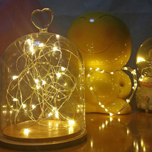 1m Copper Wire Cabinet Lamp Bookcase Decoration LED Light Flexible String Lamp Christmas Wedding Party Indoor Lighting