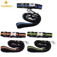 Drop Shipping Nylon Running Pet Dog Leash Hands Free Walking Jogging Puppy Dog Leashes Lead Collars