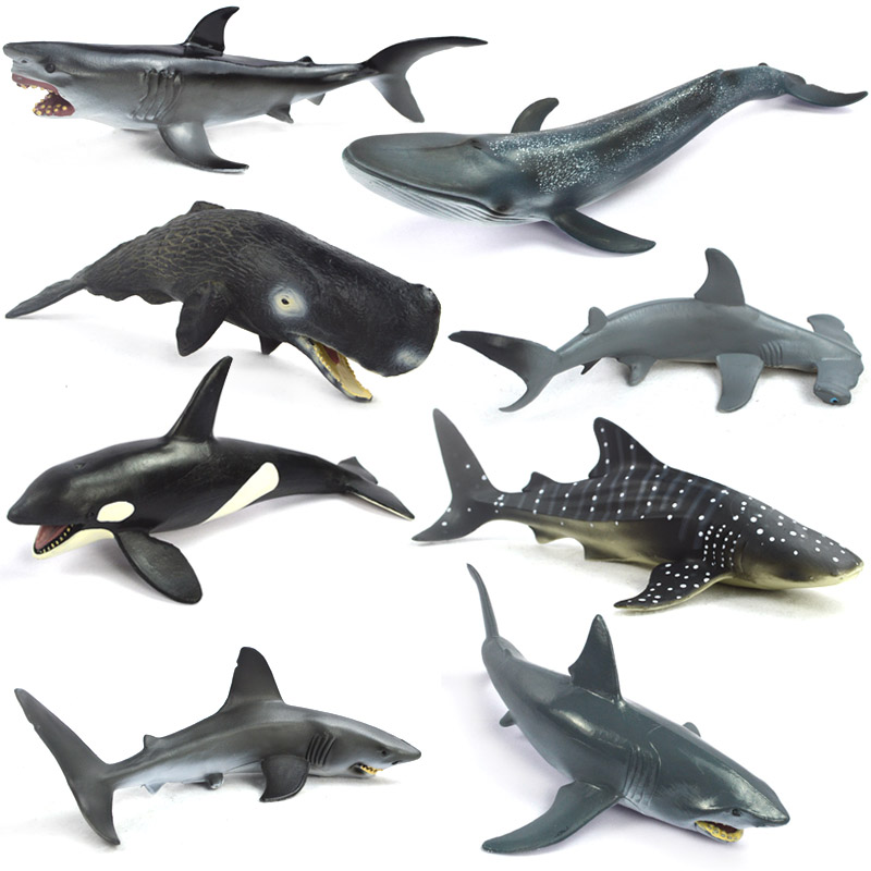 Shark Marine Animals Simulation Model Toy Gift Carcharodon carchari Killer whale Sea animal Blue whale mr froger carcharodon megalodon model giant tooth shark sphyrna aquatic creatures wild animals zoo modeling plastic sea lift toy