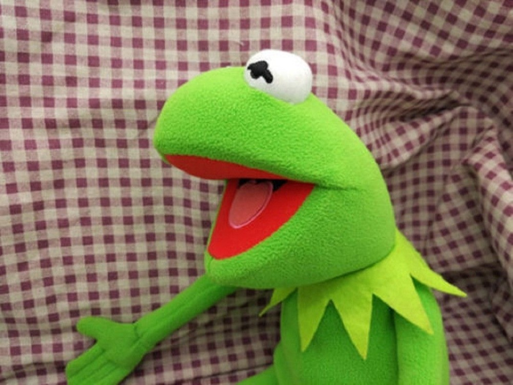 2018 hot Eden Full Body Kermit the Frog Hand Memes Plush Toy soft Xmas Gift New