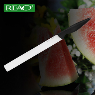 REAO Germany imported steel kitchen font b knives b font Cooking Tool Professional fruit vegetable slicing