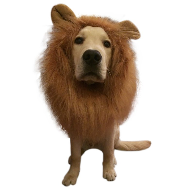 Fast Deliver Pet Costume Dog Lion Wigs With Ears Mane Hair Pet Lion Hair Pet Accessories Festival Party Fancy Halloween Costume Halloween Pet Products