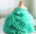 2016 Зеленый Органзы Рюшами крещение платье дизайн 1 год рождения платье Малыша Благодарения Детские партия 1 год Рождество Платье