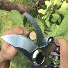 цена на Grafting Tool High Carbon Steel Fruit Tree Pruning Shears Bonsai Pruners Garden Shears Gardening Secateurs Garden Scissors Hot