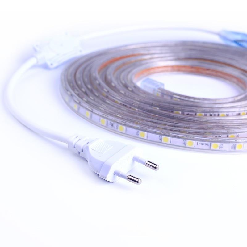 SMD 5050 AC220V LED Strip Flexible Light 60leds/m Waterproof Led Tape LED Light With Power Plug 1M/2M/3M/5M/6M/8M/9M/10M/15M/20M