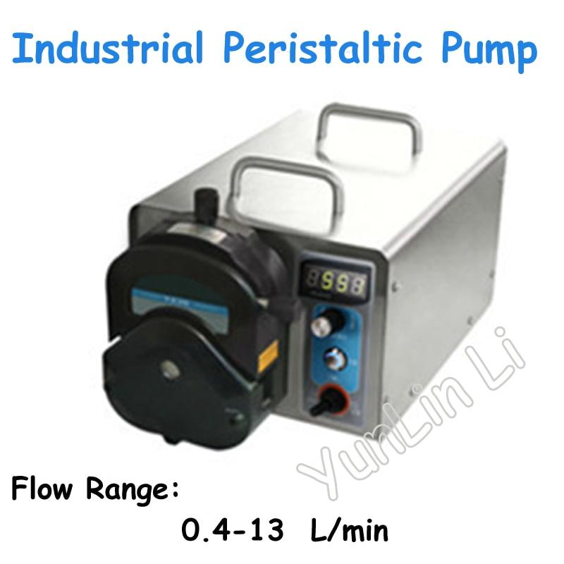 Pompe péristaltique industrielle de contrôle de vitesse de pompe avec la pompe péristaltique d'acier inoxydable de moteur sans brosse WG600S