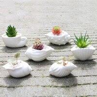 Ceramic mini fleshy flower pot white shell conch ocean succulent flower pot garden decoration potted micro landscape bonsai