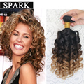 Cheap 7A Ombre Brazilian Hair Jerry Spiral Curl Bounce Curl Ombre Curly Hair Extension Weave 1 Piece Ombre Human Hair Spark SC1