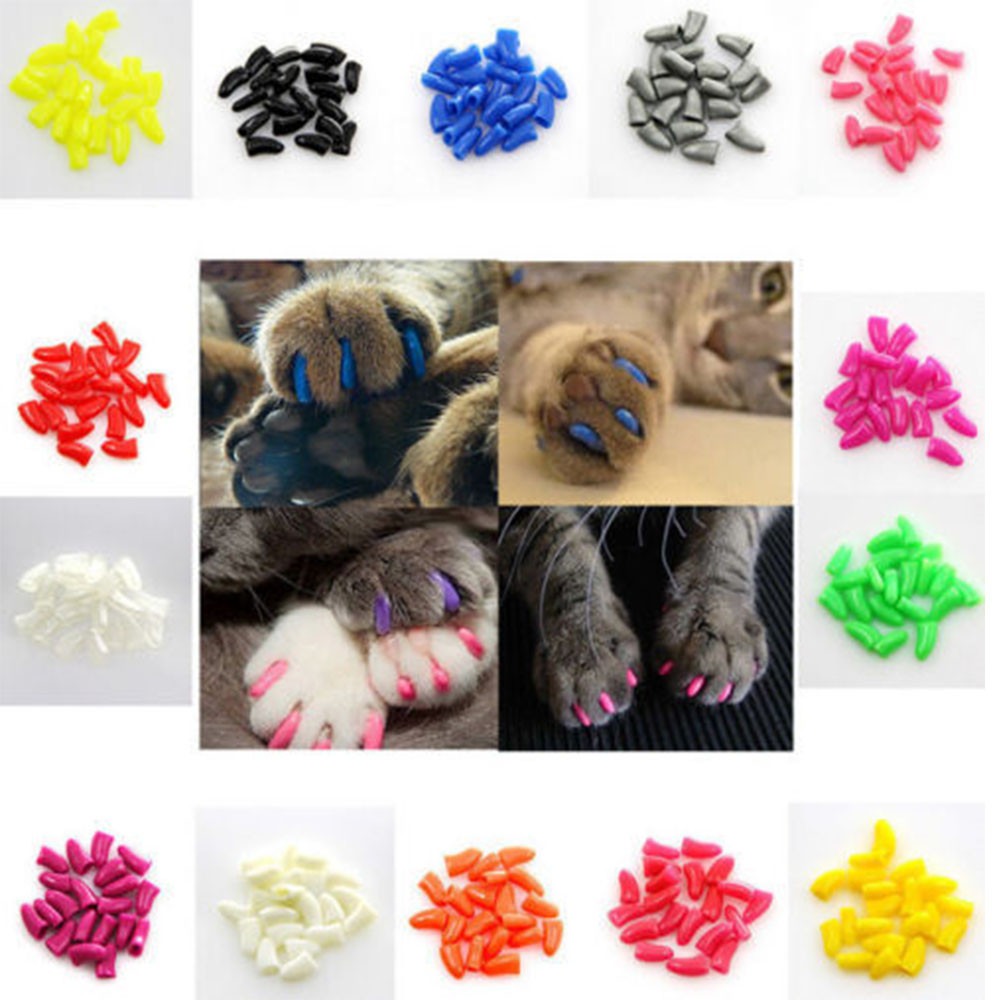 20pcs Pet Dog Cat Kitten Grooming Soft Nail Claw Caps Cover With free Adhesive Glue 2018 NEW hot sales Pet Nail Protector
