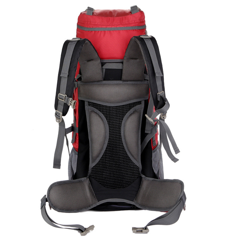 80L grande capacité alpinisme chasse voyage escalade Nylon étanche sac à dos Molle sacs à dos avec sac à cadre interne BD39 - 3