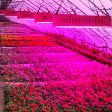 Полный спектр 400 Вт 600 Вт 800 Вт растет свет красный/синий/белый/uv/ir SMD5730 светодиодные лампы завода лучше для выращивания и цветения оптовая продажа