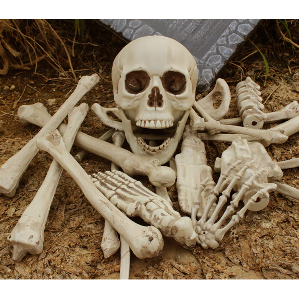 27pcs 12lb bag of bones bucky skeleton human skeleton for Bag of bones halloween decoration
