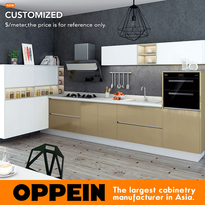 Blum Hardware Wood Grain Acrylic Kitchen Cabinet Modern
