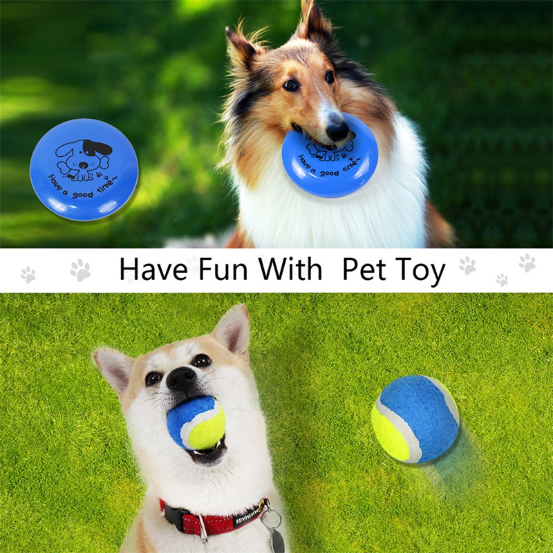 Domestic Delivery 6 PCS/Set Outdoor Pet Playing Toys Set For Drinking Bottle Bowl Ball Dogs Training Pet Travelling Sets