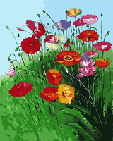 Poppy Oil Painting Frameless Picture Painting By Numbers Wall Art DIY Canvas Painting Home Decor For
