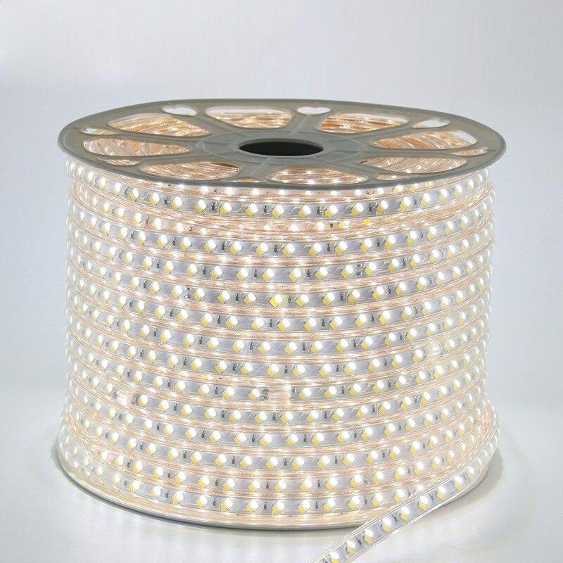 100m/lot 120leds/m ac110v 220V SMD 5730/5630 LED strip white & warm white led flexible tape light IP67 + free power plug