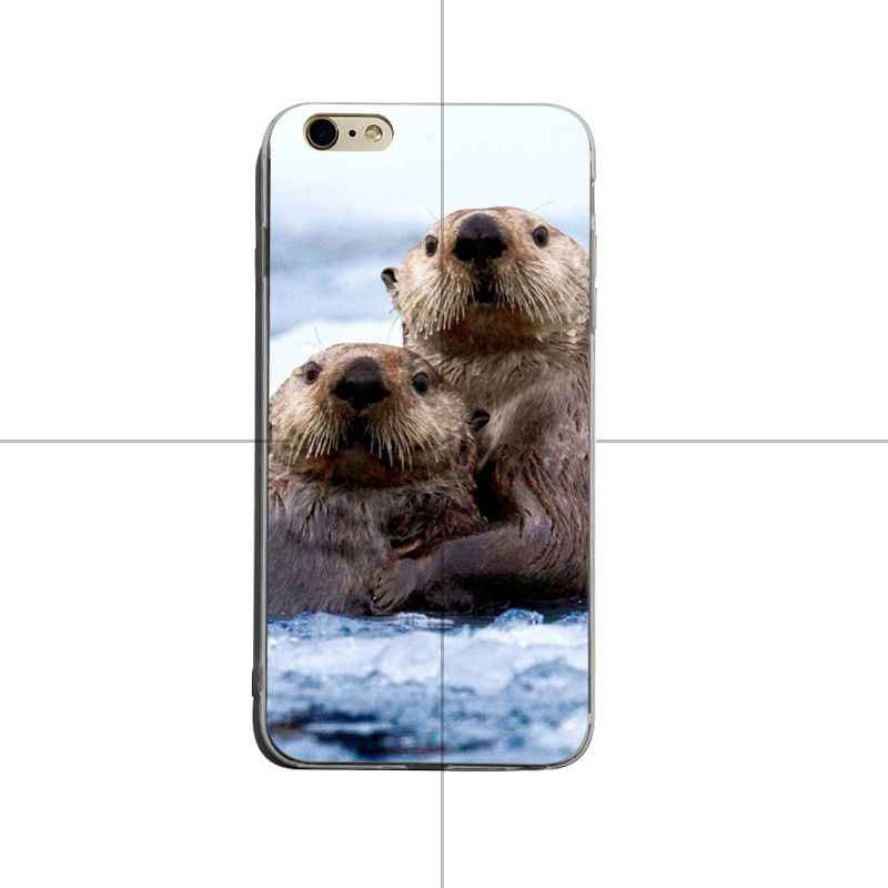 coque iphone 12 loutre