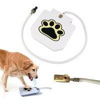 NOVO Animal de Estimação Do Cão Do Aço Inoxidável Fonte de Água Fonte Cachorrinho Dispenser Alimentador Automático Para Animais de Água Potável Ao Ar Livre Ferramenta de Treinamento