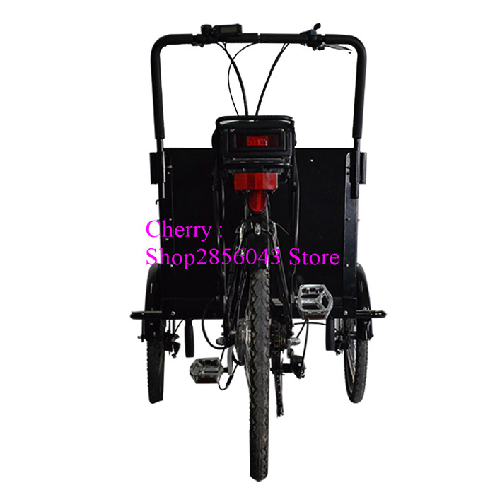 Free Shipping By Sea Cfr Street Pedal Cargo Bike Cargo Tricycle
