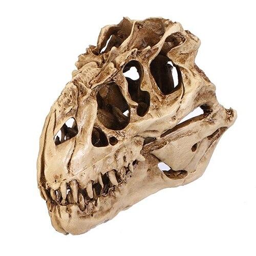 ZOOYOO resina artesanía dinosaurio cráneo diente fósil enseñanza esqueleto modelo Halloween Home Office decoración de Halloween envío de la gota