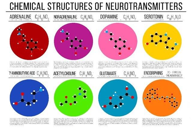 DIY rahmen wissenschaft chemie chemische struktur diagramme Wand ...