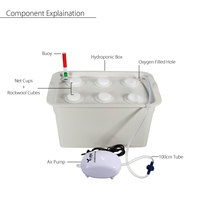 6 Holes Plant Site Hydroponic System 220V 110V Indoor Garden Cabinet Box Grow Kit Bubble Garden