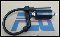 GN 250 Wangjiang Motorcycle Ignition Coil GN250 ATV 300cc